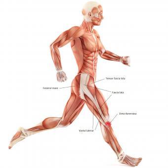 inflamație cronică a genunchiului